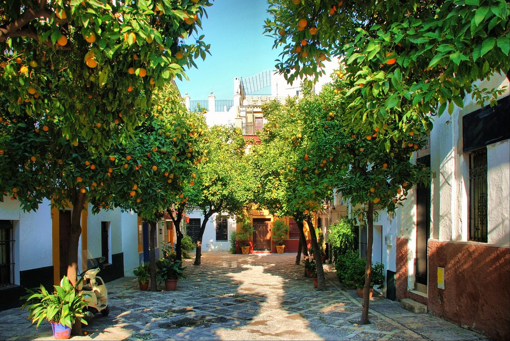 10 planes para conocer y disfrutar de Sevilla en verano 2